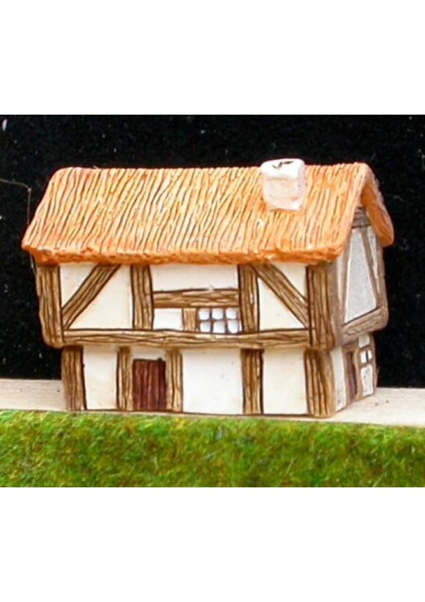 M1 Grosse maison médiévale avec toit de chaume